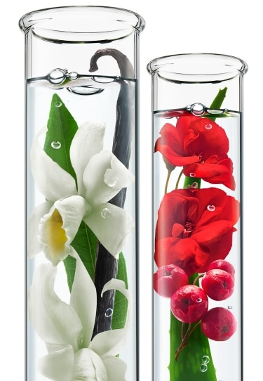 Two Glass Tubes with Vanilla and Geranium